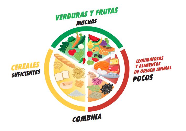 Sabes Qué Es El Plato Del Bien Comer