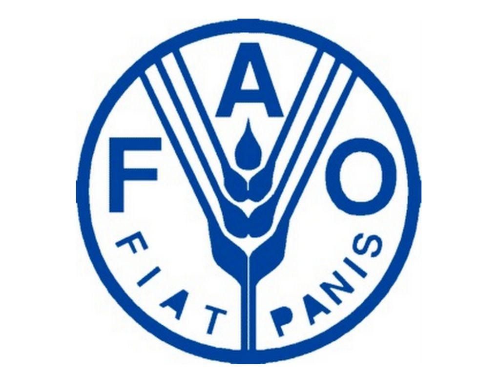 Corporativo Kosmos: contribuyendo a la Seguridad Alimentaria