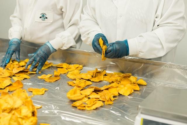 corporativo kosmos duenos, que es la ingeniera de alimentos, corporativo kosmos, parametros de sostenibilidad y calidad